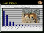 road impacts