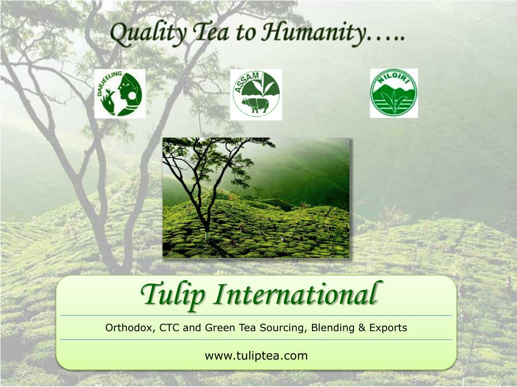 quality tea to humanity l.