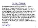 a job coach
