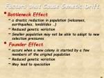 factors that cause genetic drift