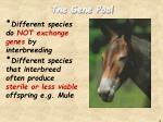 the gene pool3