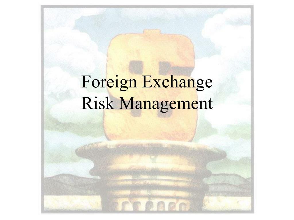 foreign exchange risk management l.