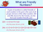 what are friendly numbers