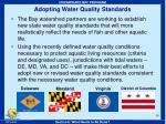 adopting water quality standards