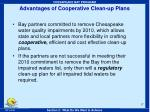 advantages of cooperative clean up plans