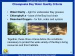 chesapeake bay water quality criteria