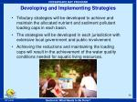 developing and implementing strategies