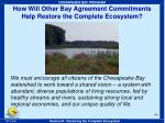 how will other bay agreement commitments help restore the complete ecosystem