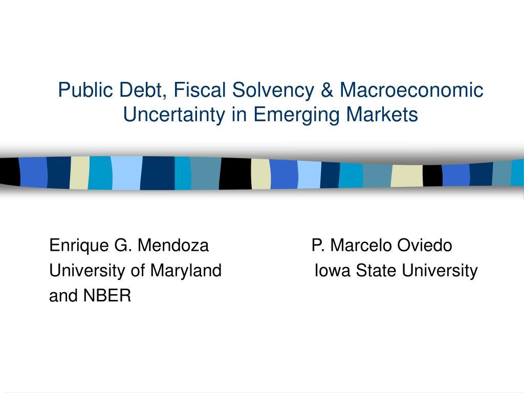 public debt fiscal solvency macroeconomic uncertainty in emerging markets l.