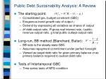 public debt sustainability analysis a review