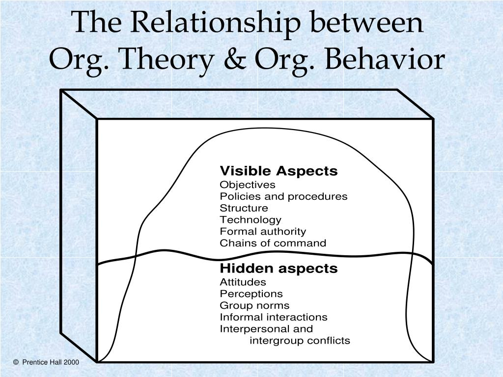 the relationship between org theory org behavior l.