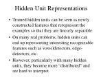 hidden unit representations