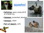 squawked16