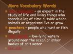 more vocabulary words19
