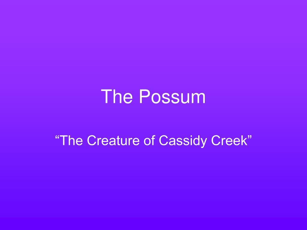 the possum l.