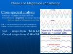 phase and magnitude consistency
