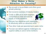 what makes a niche attractive for focusing