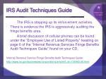 irs audit techniques guide