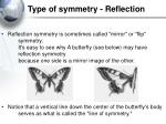type of symmetry reflection