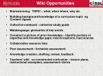 wiki opportunities