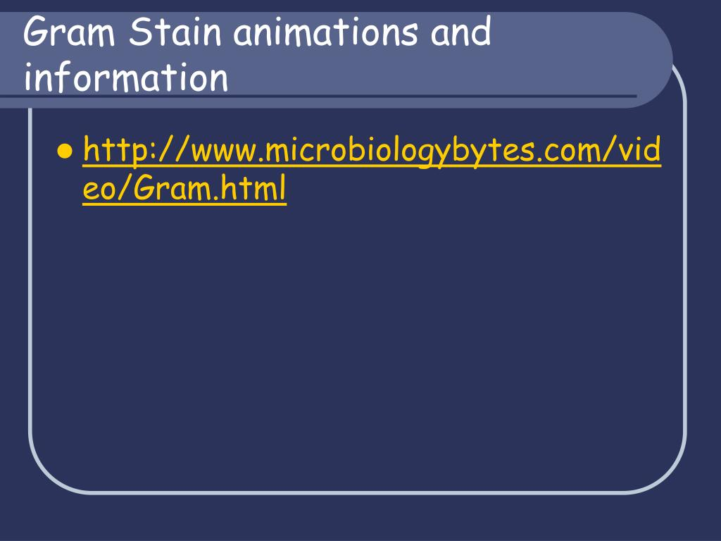 Gram Stain animations and information