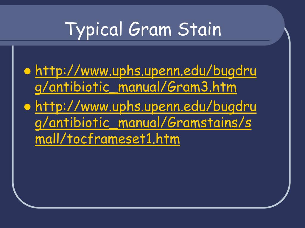 Typical Gram Stain