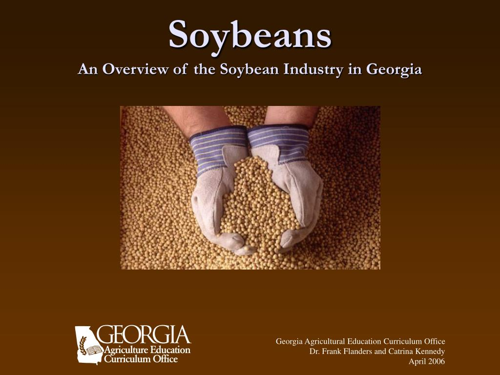 soybeans an overview of the soybean industry in georgia l.