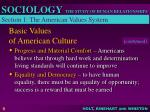 basic values of american culture5