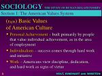 eight basic values of american culture