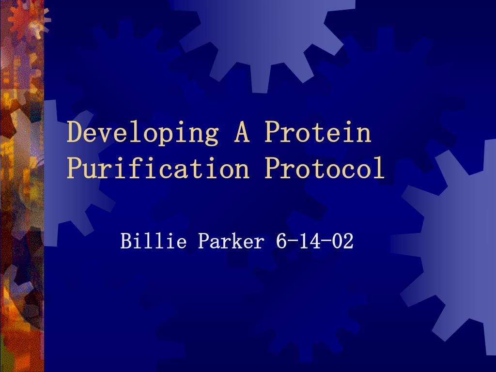 developing a protein purification protocol l.