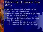 extraction of protein from cells