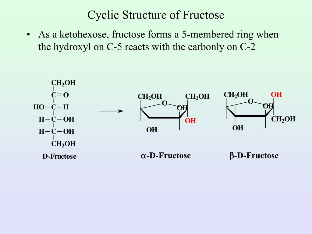 cyclic structure of fructose l.