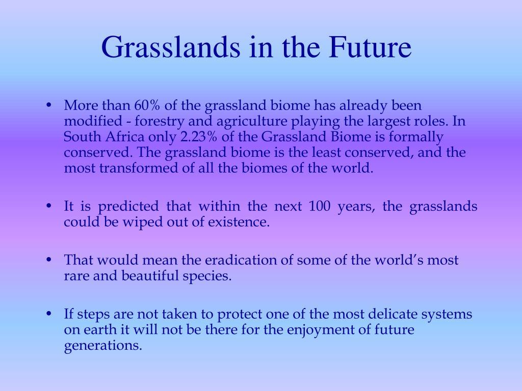 Grasslands in the Future