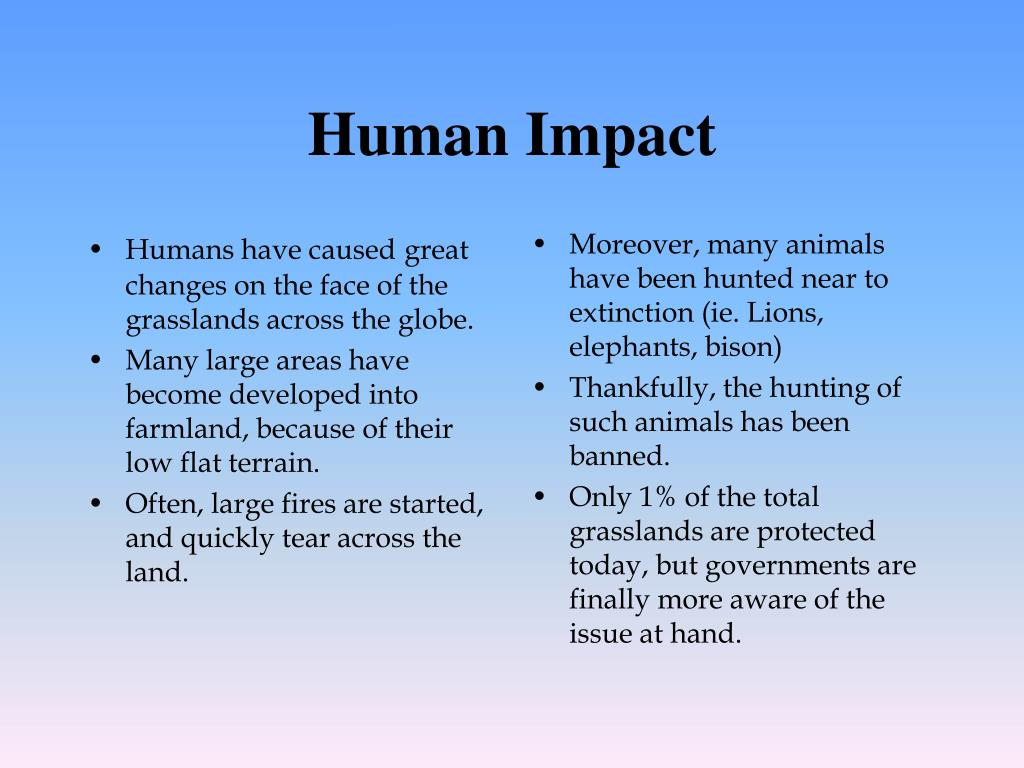 Humans have caused