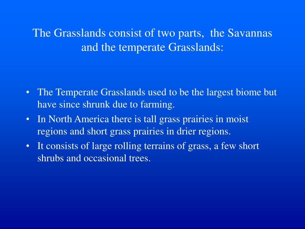 The Grasslands consist of two parts,  the Savannas and the temperate Grasslands:
