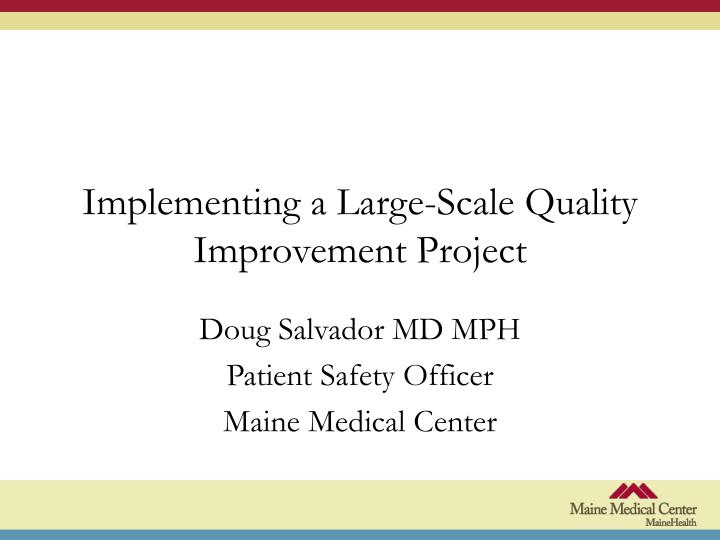implementing a large scale quality improvement project n.