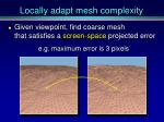 locally adapt mesh complexity