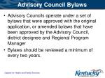 advisory council bylaws