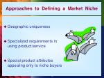 approaches to defining a market niche