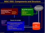 bisc dss components and structure