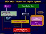 bisc dss process of expert system