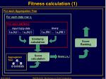 fitness calculation 1