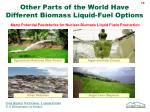 other parts of the world have different biomass liquid fuel options