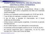 significado perinatal das dilata es ventriculares cerebrais9