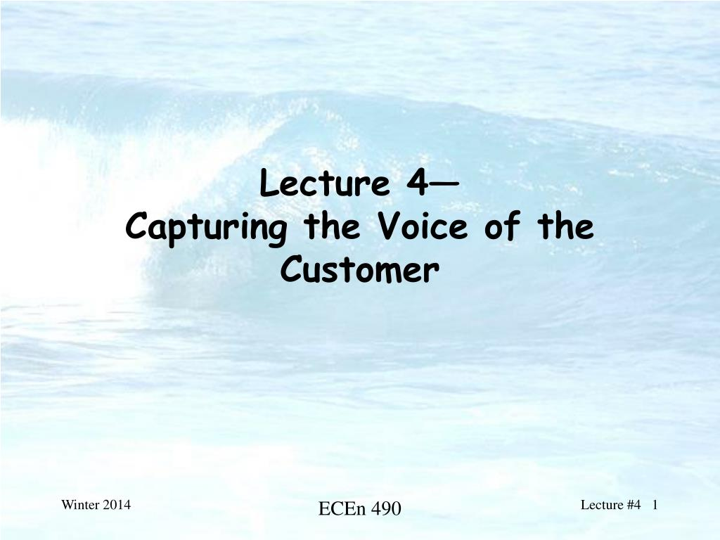 lecture 4 capturing the voice of the customer l.