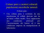 colture pure e caratteri colturali popolazioni microbiche naturali5