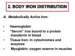 2 body iron distribution