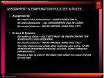 assignment examination policies rules