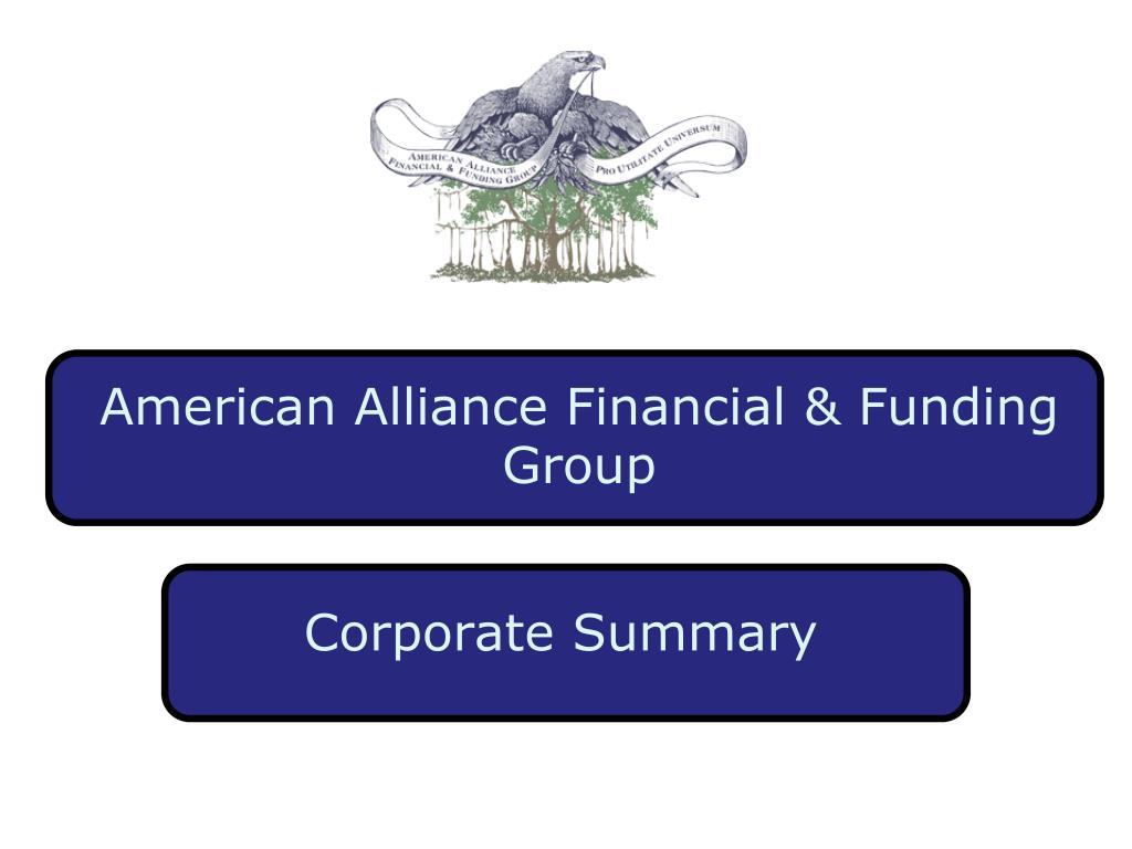 american alliance financial funding group l.