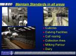 maintain standards in all areas